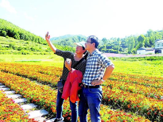 """""""十一""""临潭共接待游客6.24万人次"""